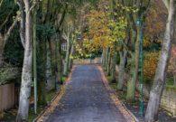 Mapperley Park Nottingham